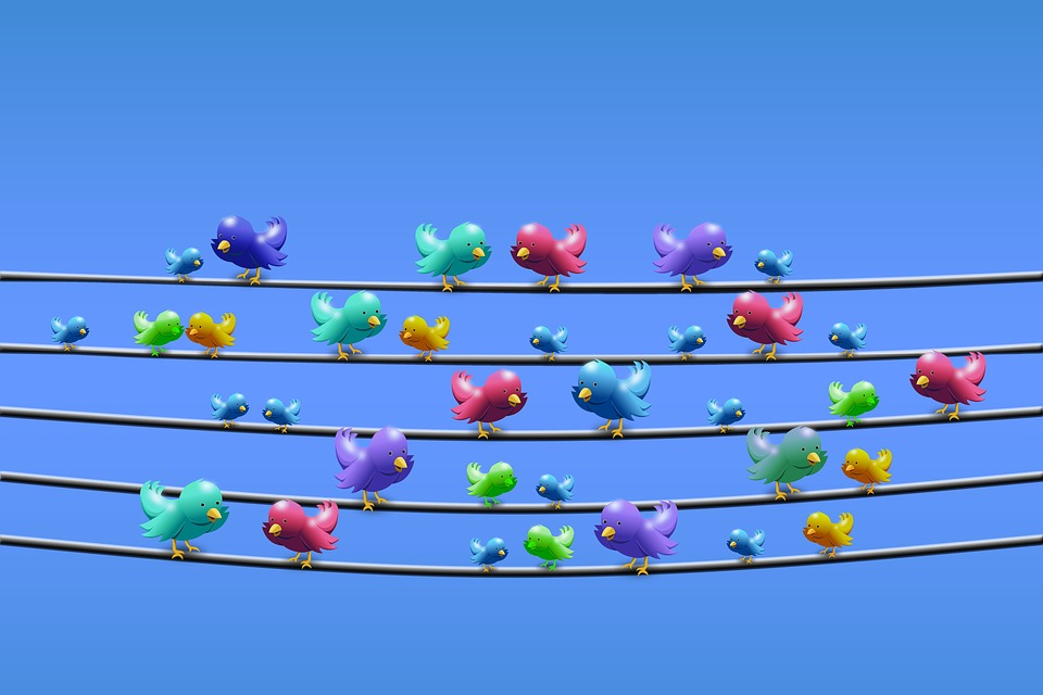 Consejos básicos para sacar partido a Twitter y crear marca profesional