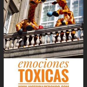 emociones-toxicas-sindromes-profesionales-empleabilidad